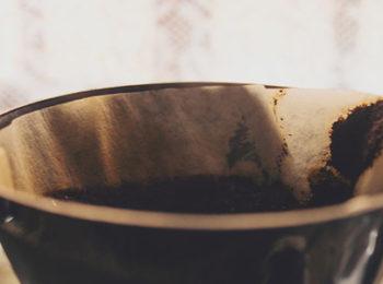 impurezas e defeitos do café
