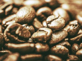 diferença entre o café gourmet e o café tradicional