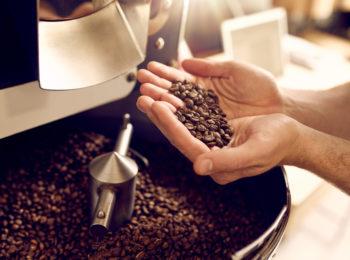 tipos de café Arábica que você precisa experimentar